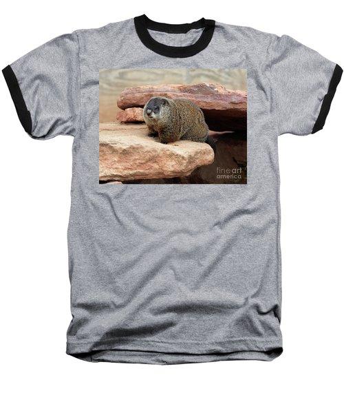 Groundhog Baseball T-Shirt by Louise Heusinkveld