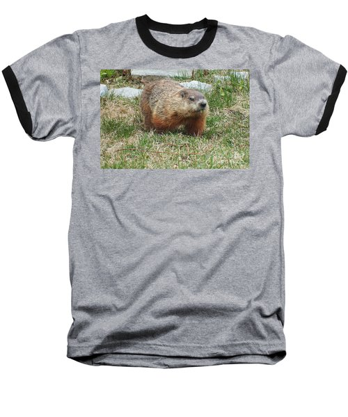 Groundhog Baseball T-Shirt