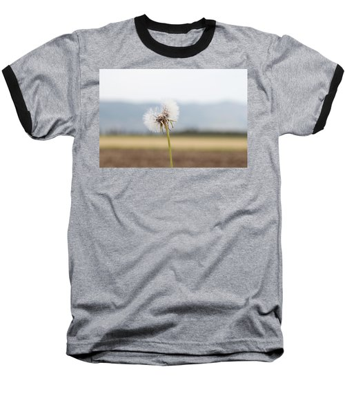 Groundsel In The Wind Baseball T-Shirt by Yoel Koskas