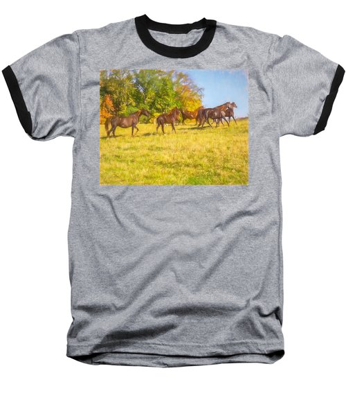 Group Of Morgan Horses Trotting Through Autumn Pasture. Baseball T-Shirt