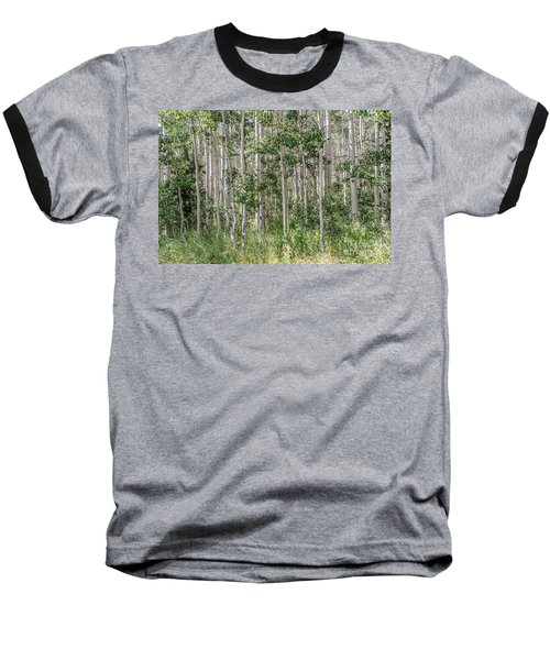 Grove Of Quaking Aspen Aka Quakies Baseball T-Shirt