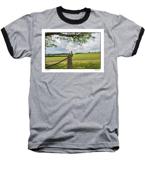 Growing Season Baseball T-Shirt by R Thomas Berner