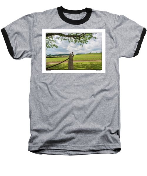 Growing Season Baseball T-Shirt