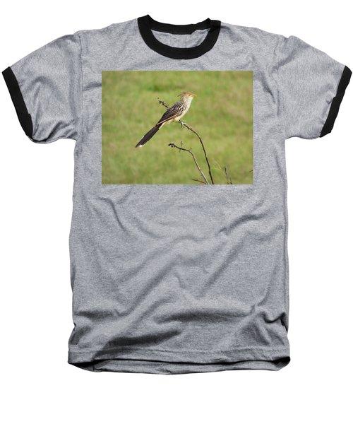 Guira Cuckoo Baseball T-Shirt