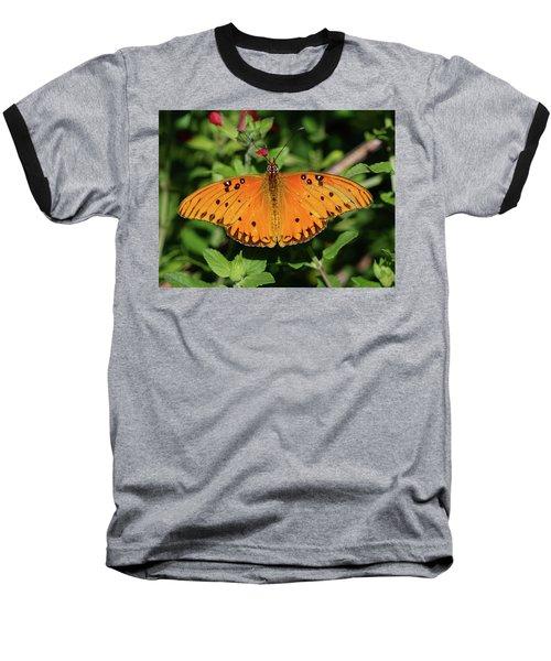 Gulf Fritillary Butterfly Baseball T-Shirt