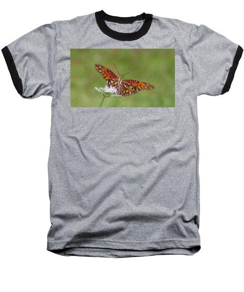 Gulf Fritillary On Elephantsfoot Baseball T-Shirt