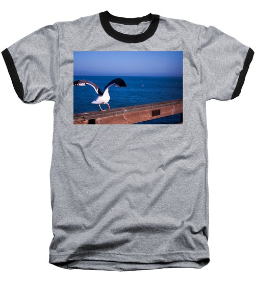 Gull Dance Baseball T-Shirt