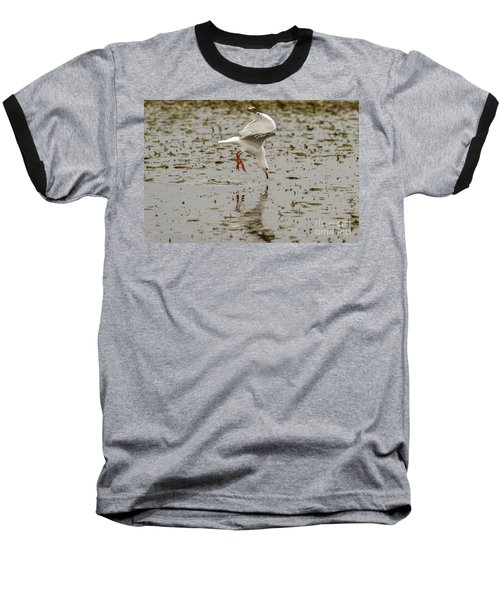 Gull Fishing 01 Baseball T-Shirt