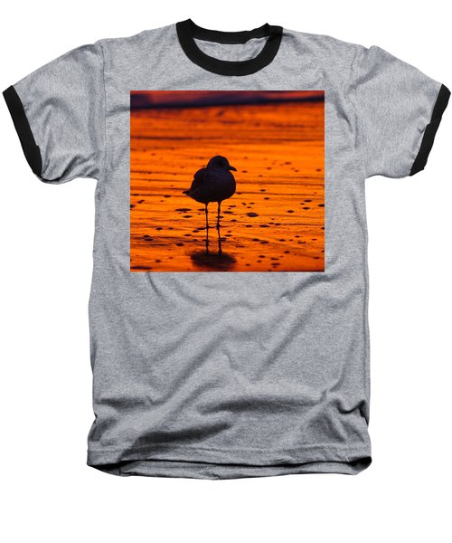 Gull Caught At Sunrise Baseball T-Shirt