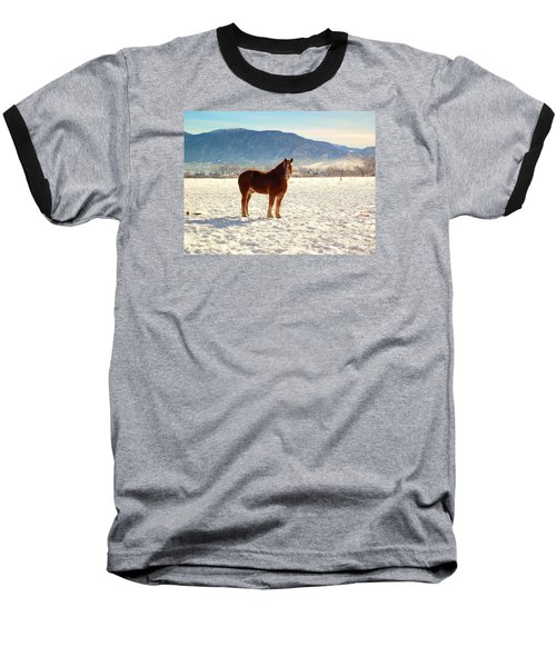 Gus Baseball T-Shirt