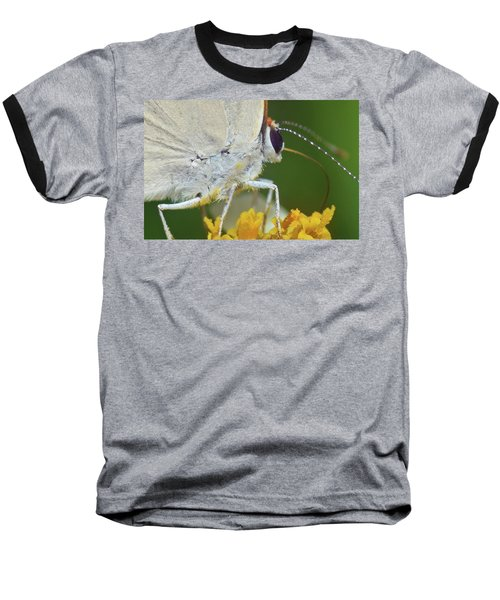 Hairstreak Closeup Baseball T-Shirt