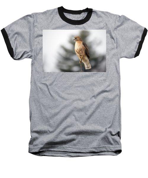 Hal The Hybrid Portrait 1 Baseball T-Shirt