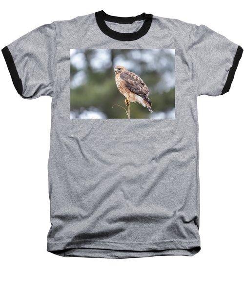 Hal The Hybrid Portrait 3 Baseball T-Shirt
