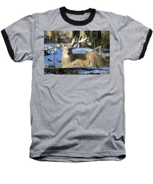 Half A Monster Baseball T-Shirt by Brook Burling