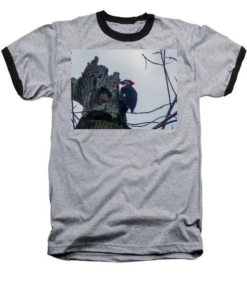 Hammering It Home Baseball T-Shirt by Kimo Fernandez