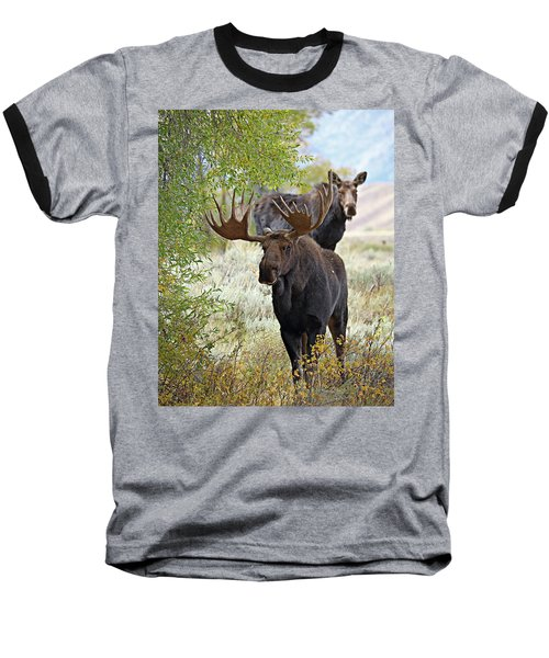 Handsome Bull With Cow Baseball T-Shirt