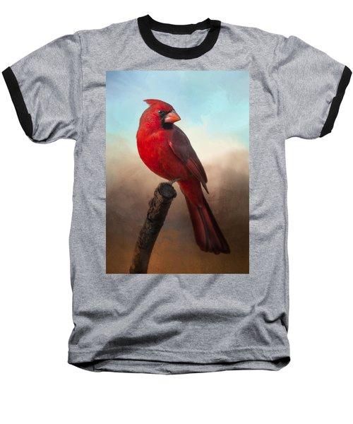 Handsome Cardinal Baseball T-Shirt by Barbara Manis