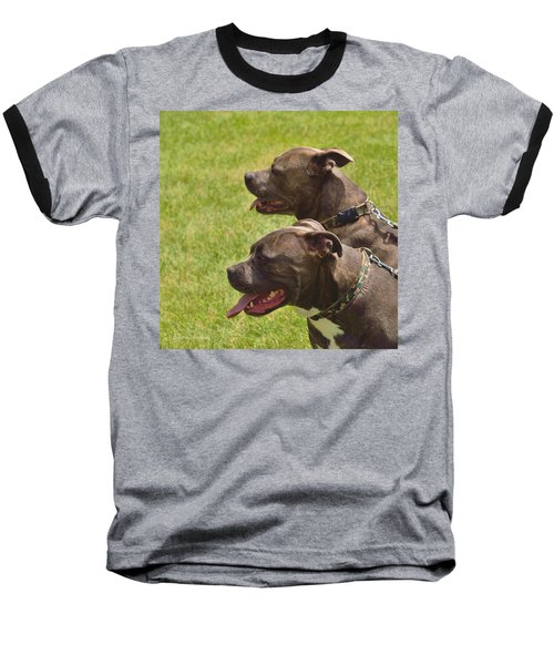 Handsome Pit Bulls Baseball T-Shirt
