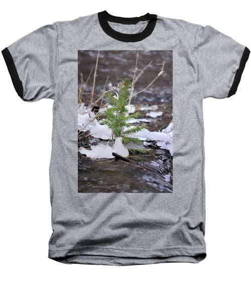 Hanging In There Baseball T-Shirt