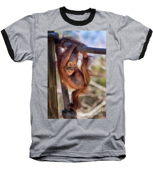 Hanging Out Baseball T-Shirt by Stephanie Hayes