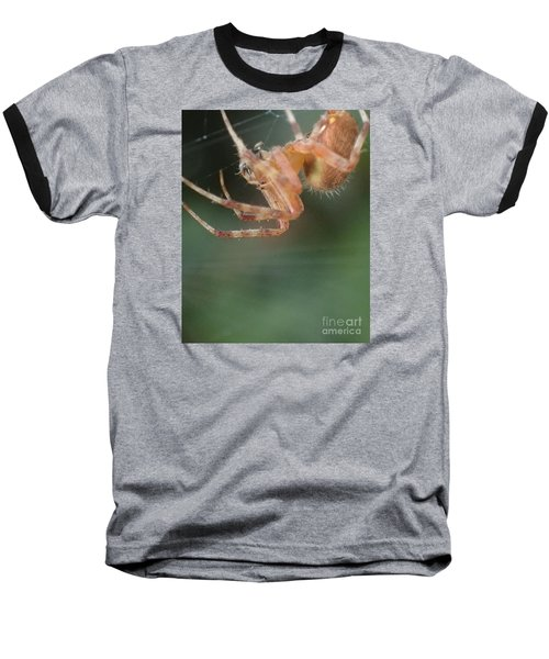 Baseball T-Shirt featuring the photograph Hanging Spider by Christina Verdgeline