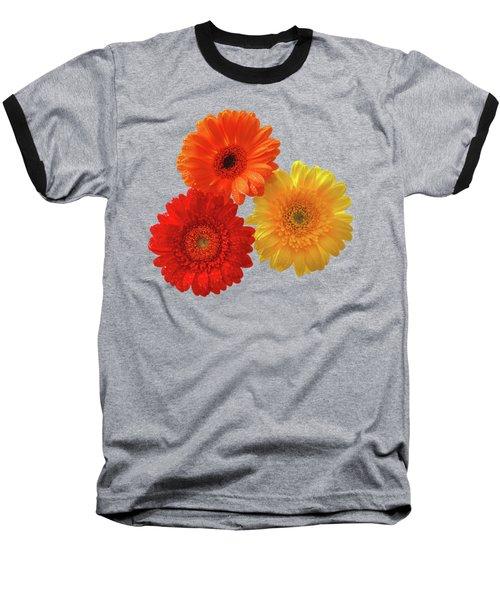 Happiness - Orange Red And Yellow Gerbera On Black Baseball T-Shirt by Gill Billington