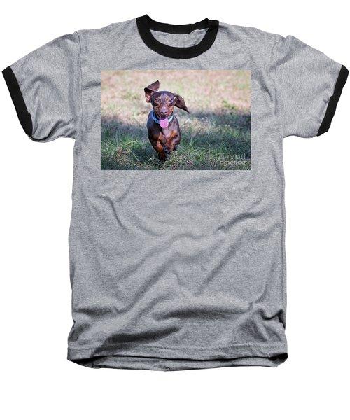 Happy Dachshund Baseball T-Shirt by Stephanie Hayes