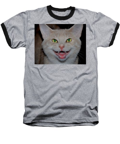 Happy For Spring Cat Baseball T-Shirt