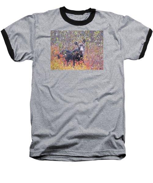 Happy Moose Baseball T-Shirt by Elizabeth Dow