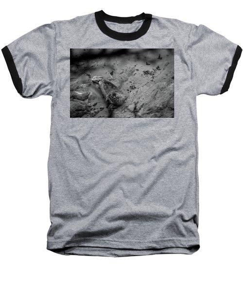 Harbor Seal Pup Monochrome  Baseball T-Shirt