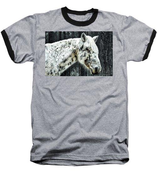 Hard Winter Baseball T-Shirt