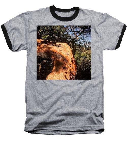 Hard Wood Baseball T-Shirt