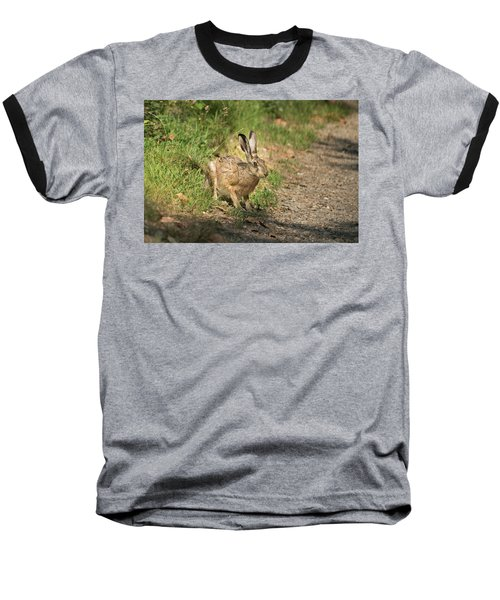 Hare In The Woods Baseball T-Shirt