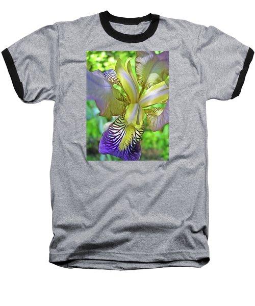 Harmony 4 Baseball T-Shirt by Lynda Lehmann