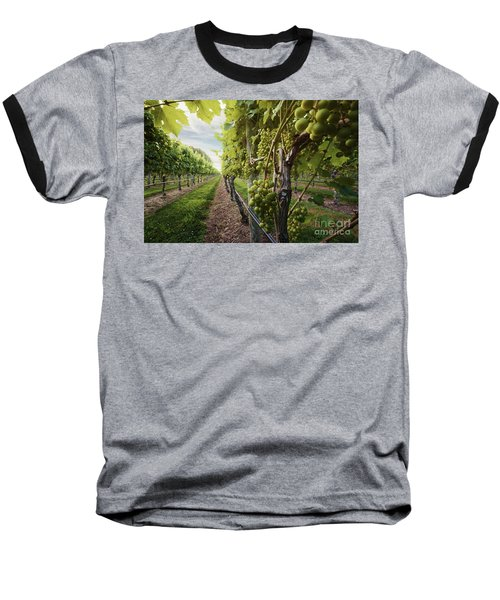 Harmony Vineyard Stony Brook New York Baseball T-Shirt