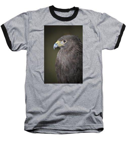 Harris Hawk Baseball T-Shirt by Tyson and Kathy Smith