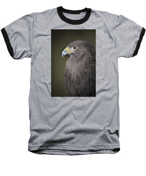 Harris Hawk Baseball T-Shirt