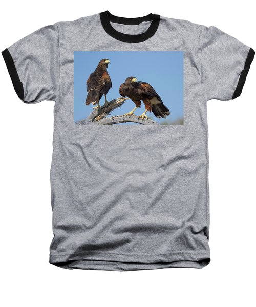 Harris Hawks Baseball T-Shirt