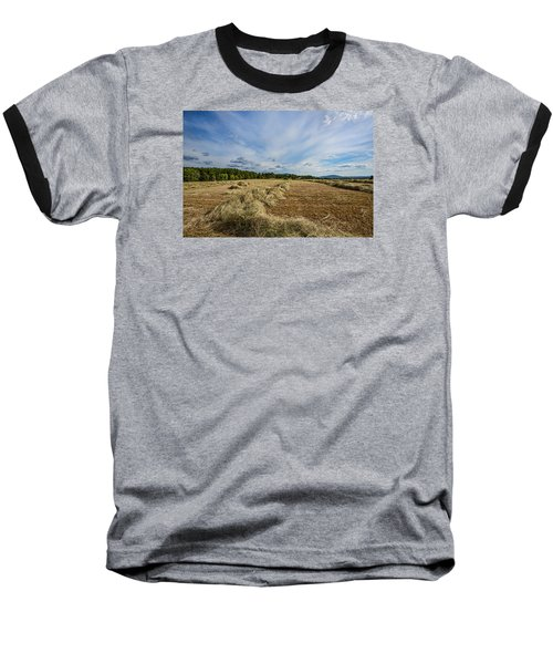 Harvest Baseball T-Shirt by Susi Stroud