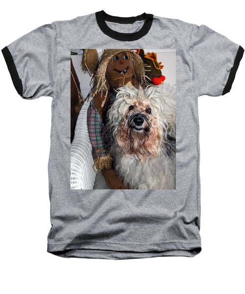 Havanese Cutie Baseball T-Shirt by Sally Weigand