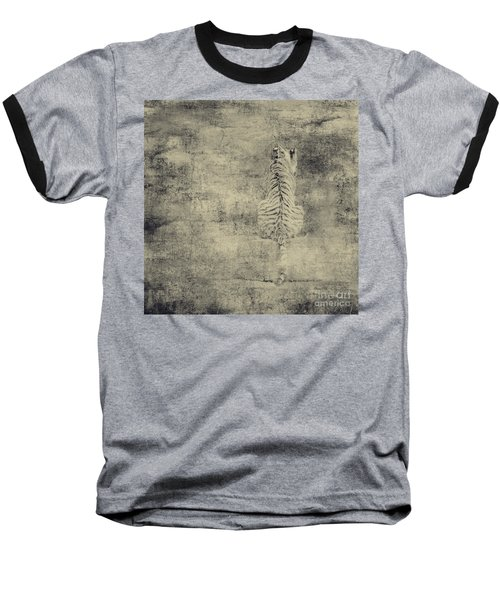 Have You Comprehended... Baseball T-Shirt