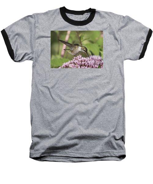 Having A Sip Baseball T-Shirt by Stephen Flint