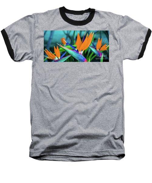 Hawaii Bird Of Paradise Flowers Baseball T-Shirt