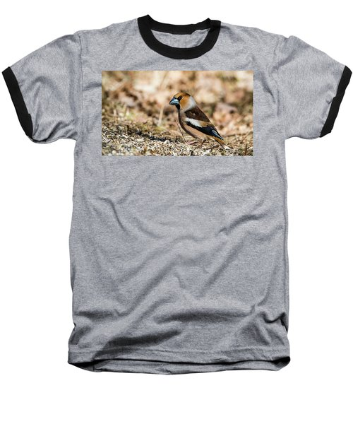 Baseball T-Shirt featuring the photograph Hawfinch's Gaze by Torbjorn Swenelius