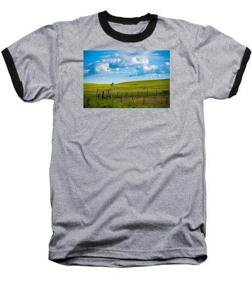 Hawk And Flint Hills Baseball T-Shirt