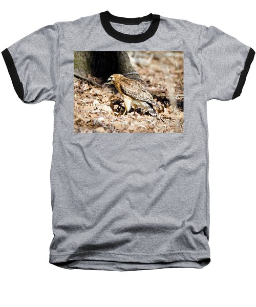 Hawk And Gecko Baseball T-Shirt by George Randy Bass