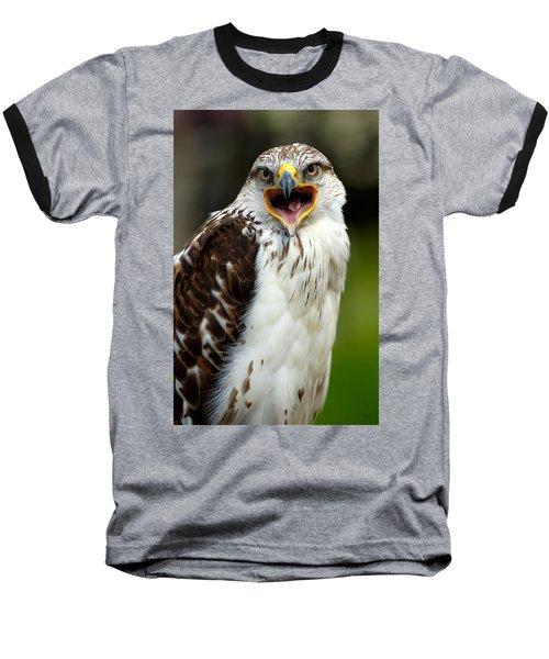 Hawk Baseball T-Shirt