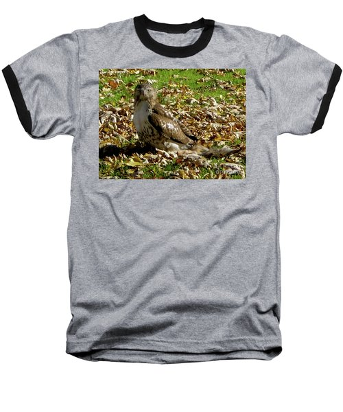 Hawk Falling Leaves Baseball T-Shirt