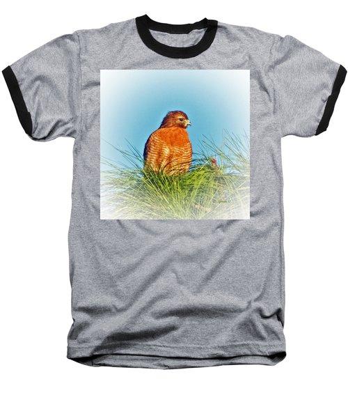 Hawk High Baseball T-Shirt