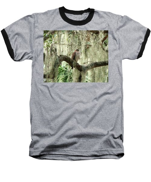 Hawk In Live Oak Hammock Baseball T-Shirt